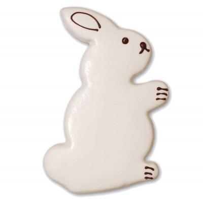 Easter Bunny (JPEG)